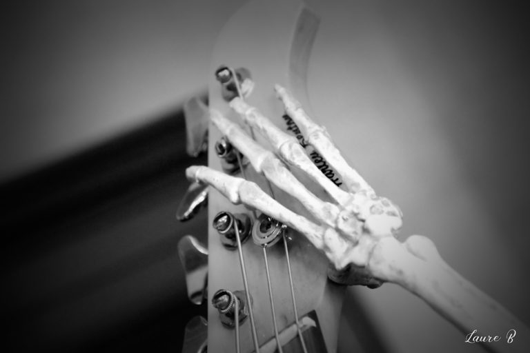 guitare squelette domaine Anubis main