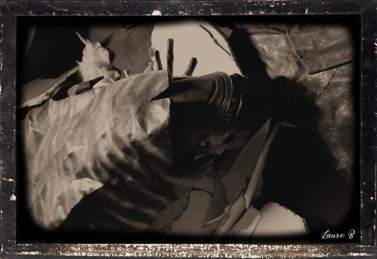 domaine Anubis Alien tête noir et blanc