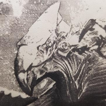 détail de la gravure